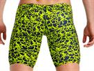 Funky Trunks Coral Gold Mens Jammer - 6 (36)
