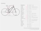 Stevens Primera Disc Lady Trekkingrad - 54 foggy grey