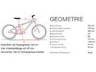 ben-e-bike Twentyfour E-Power Pro Mountainbike Starrgabel inkl. 175WH Akku