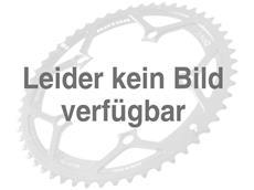 Rotor No-Q Kettenblatt 42 Zähne schwarz 130er Lochkreis