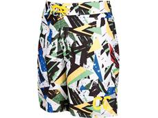 Arena Chad Le Clos Long Bermuda Watershort