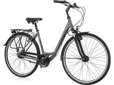 Gudereit Comfort 7.0 Einrohr Cityrad