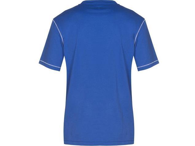 Arena Teamline Tee Shirt - S royal